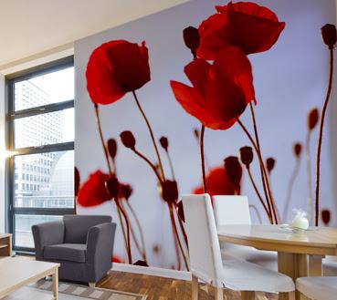 Красные маки на стене