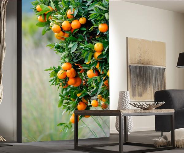 Фотообои с апельсинами для кухни