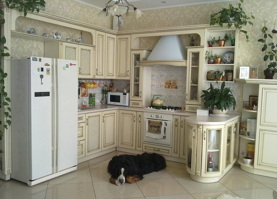"""Кухня в стиле """"прованс"""" с комнатными цветами"""